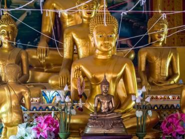160223_Thai_Raahi_027
