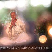 The Babaji Path